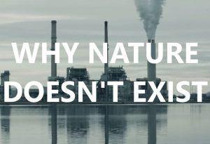 Экология как новая политика: подборка книг